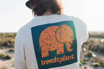 trendsplant_forCrop